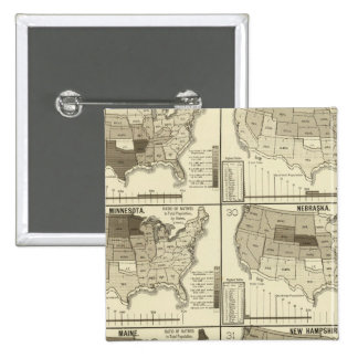 lithographed maps of United States Pinback Button