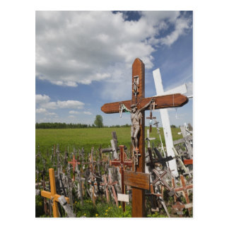 Lithuania, Central Lithuania, Siauliai, Hill Post Cards