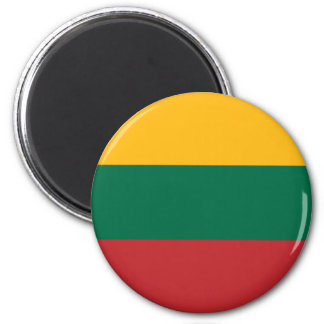 Lithuania  - Lithuanian National Flag Magnet