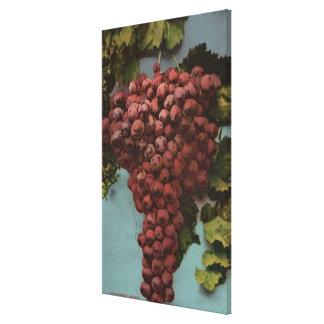 Litografía de Chromo de la fruta de las uvas de Ca Impresiones En Lienzo Estiradas
