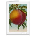 Litografía de Chromo de la fruta de PeachFruitStat Felicitación