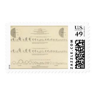 Litografía insana, estadística 1870 de los sello