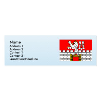 Litomerice, Czech Double-Sided Mini Business Cards (Pack Of 20)