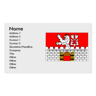 Litomerice, Czech Double-Sided Standard Business Cards (Pack Of 100)