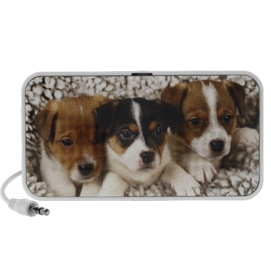 Litter of puppies mini speaker