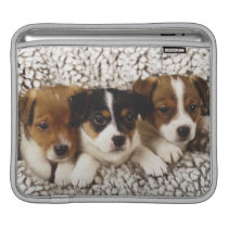 Litter of puppies sleeve for iPads