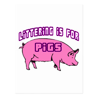 Littering Is For Pigs Postcard