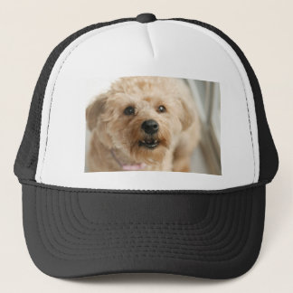 Little Awesome Abby the Yorkie Poo Trucker Hat