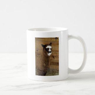 Little Baby Alpaca - Vicugna pacos Coffee Mug