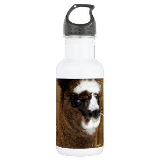 Little Baby Alpaca - Vicugna pacos Stainless Steel Water Bottle