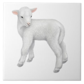 Little Baby Lamb Customizable Tile