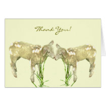 Little Baby Lambs on Yellow Thank You Card