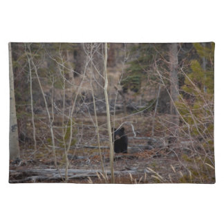 Little Bear in Big Forest Cloth Place Mat