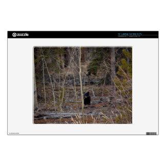 Little Bear in Big Forest Laptop Skin