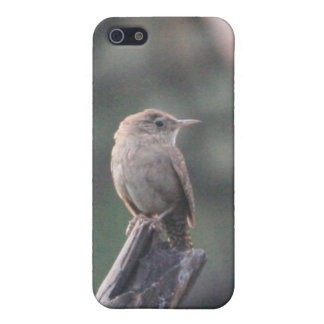Little Bird $/4s Case For iPhone SE/5/5s