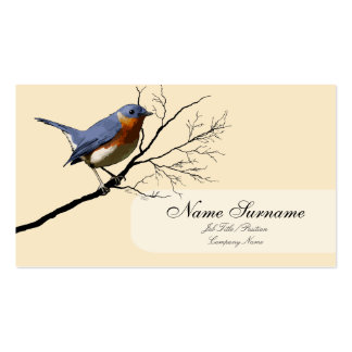 Little Bird Blue business card template