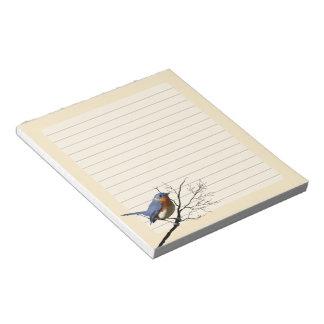 Little Bird Blue, Notepad