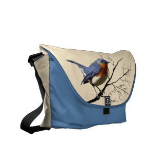 Little Bird Blue, rickshaw messenger bag