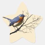 Little Bird Blue, stickers