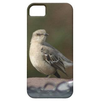 Little Bird iPhone 5 Case