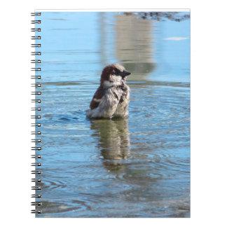 Little Bird- Notebook