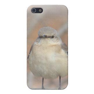 Little Birdie Case Case For iPhone 5