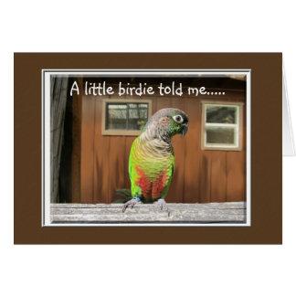 Little Birdie Greeting Card
