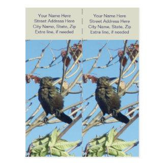 Little Birdie in a Tree Bookmarkers Postcard