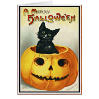 Little Black and Jack O' Lantern Halloween Card