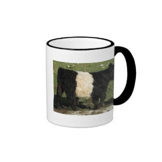 Little Black Beltie Calf Ringer Coffee Mug