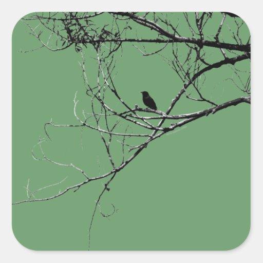 Little Black Bird Sticker