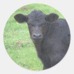 Little Black Bull Stickers