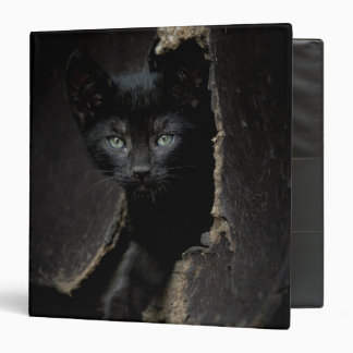 Little Black Kitty 3 Ring Binder