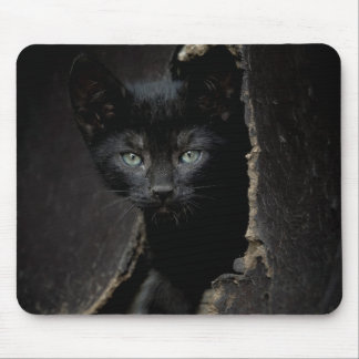 Little Black Kitty Mouse Pad