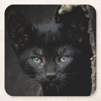 Little Black Kitty Square Paper Coaster
