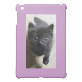 Little Black Manx with big blue eyes Cover For The iPad Mini
