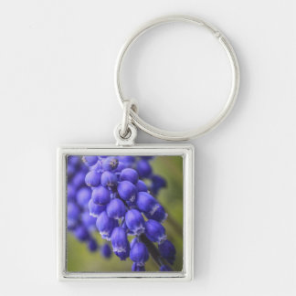 Little Blue Buds Keychains