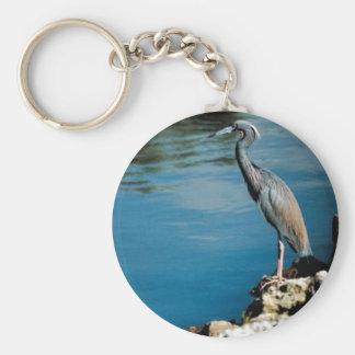 Little blue heron basic round button keychain