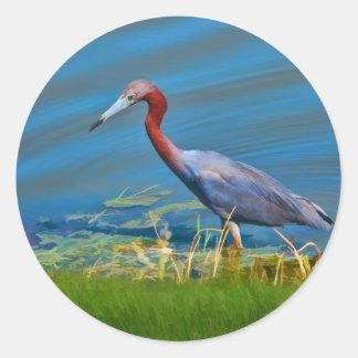 Little Blue Heron Wading Sticker