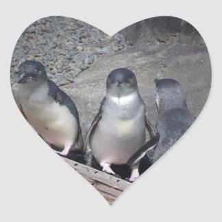 Little Blue Penguins Heart Stickers