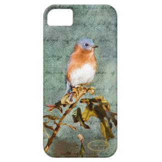 Little Bluebird iPhone SE/5/5s Case