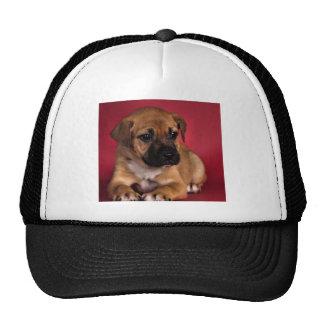 Little Boo Trucker Hat