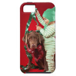 Little boy decorating a dog iPhone 5 covers