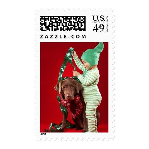 Little boy decorating a dog postage stamp