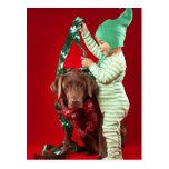 Little boy decorating a dog postcard