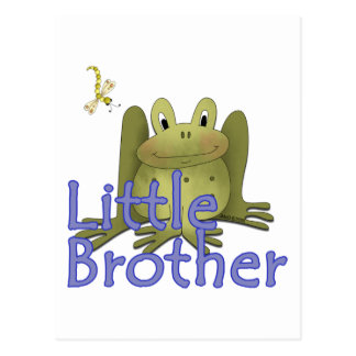 Little Brother Frog Post Card