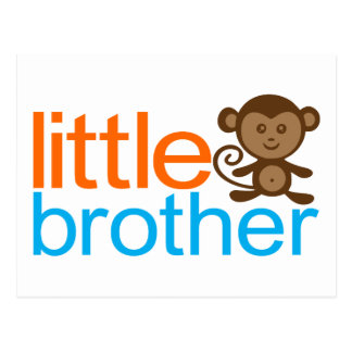 Little Brother Monkey Postcard