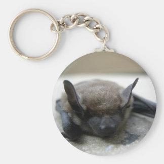 Little brown bat (Myotis lucifugus) Keychain