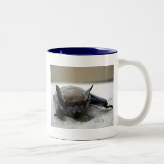 Little brown bat (Myotis lucifugus) Two-Tone Coffee Mug