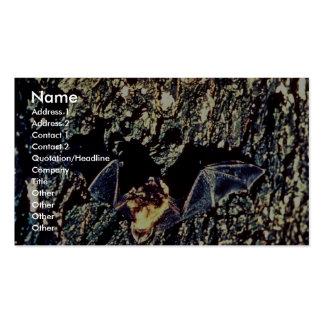 Little Brown Bats Business Card